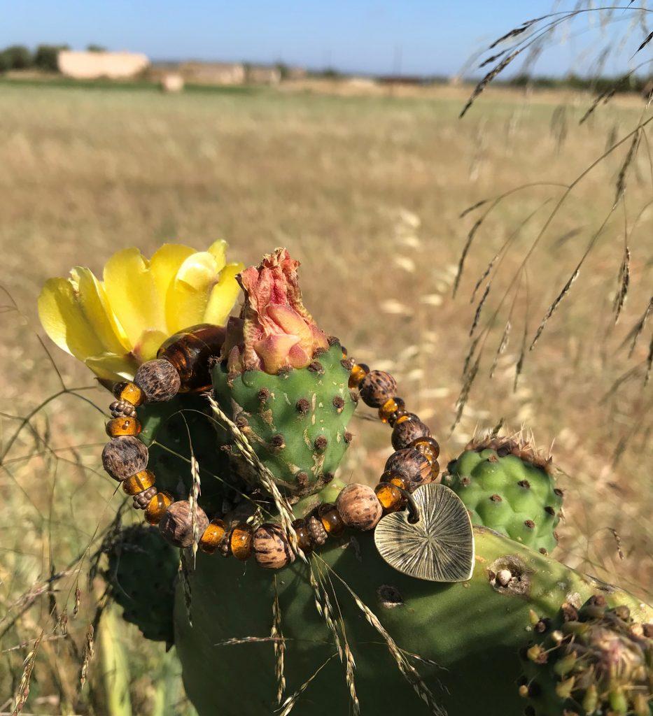 Mallorca, Holz, Kaktus